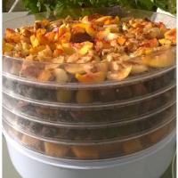 Faites sécher vos fruits, c'est le plein d'énergie pour l'hiver.