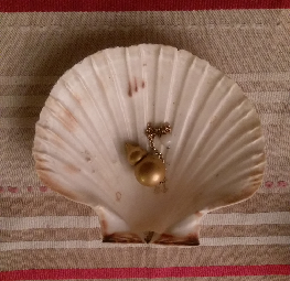 ma coquille saint jacques