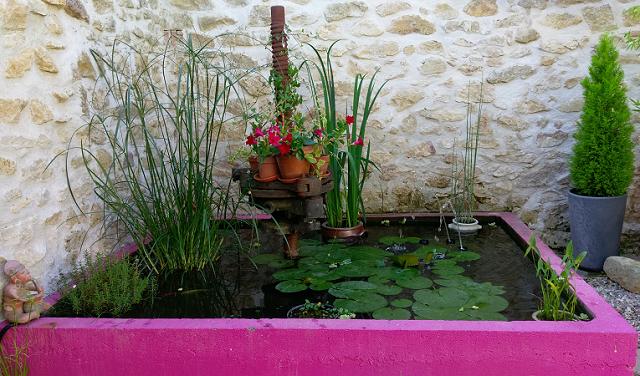 bassin à poissons dans une cuve à vin.
