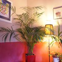 Les couleurs Feng Shui pour les pièces de jour dans la maison et le bureau, décoration Feng Shui