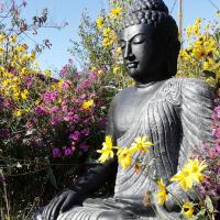 Le nouveau Bouddha du jardin de Pondaurat